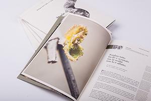 gruppo_pragma_brochure_dolegna_del collio